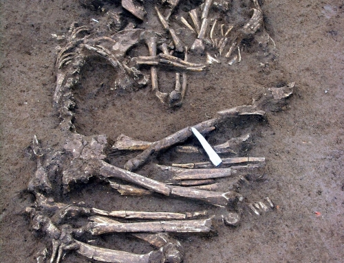 Shakespearean Exhumations: The Neolithic Romeo and Juliet